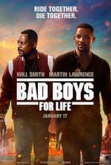 绝地战警:疾速追击(4K原盘 全景声 HDR) Bad Boys for Life (4K UHD Atmos HDR)